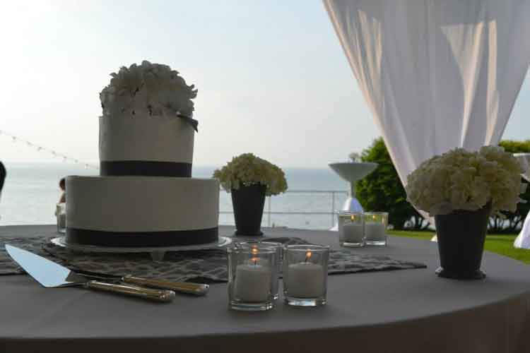 wedding - lake erie - shorewood country club